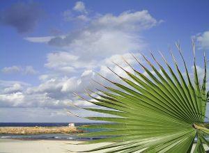 tunisko-plaz